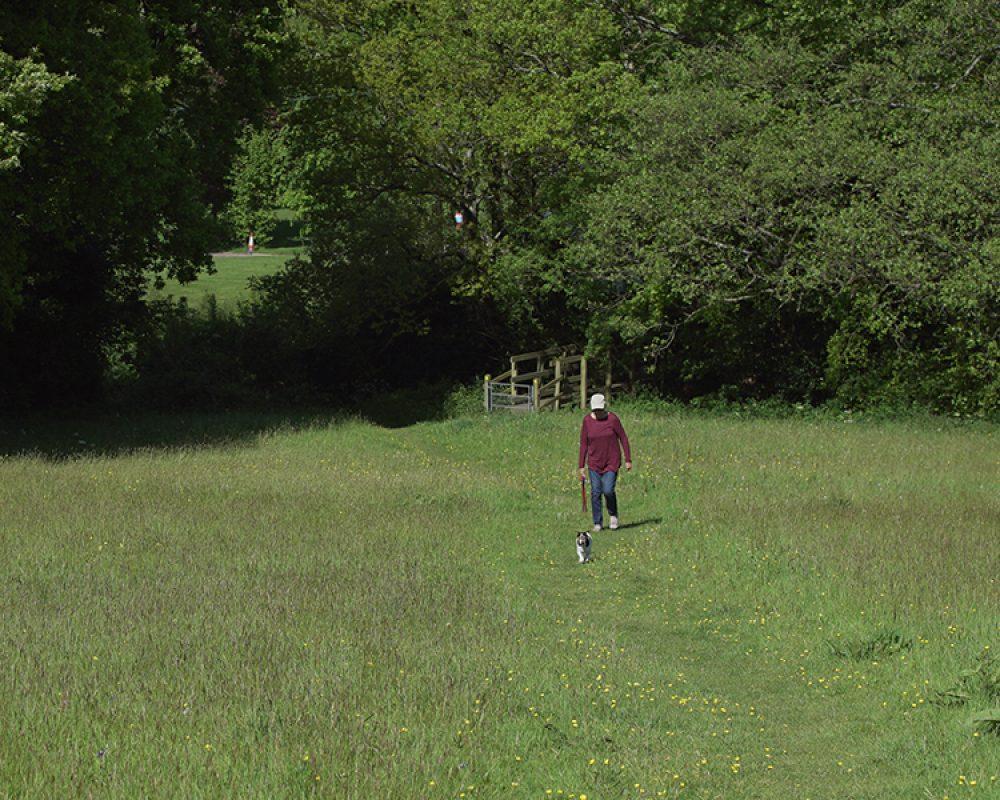 Hook Farm Image 25